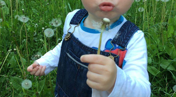 Развивающие игры и занятия с ребенком от 1 года до 1,5 лет
