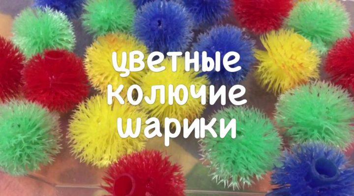Цветные колючие шарики