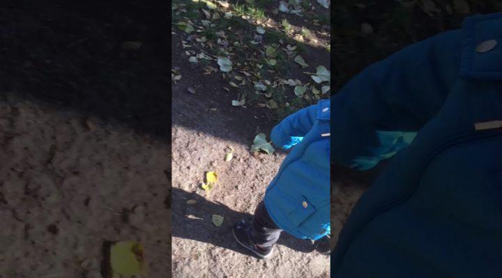 Игра «Большие ноги шли по дороге» на улице.