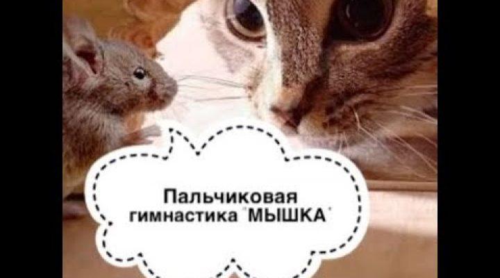 Пальчиковая игра «Мышка в норку забралась»