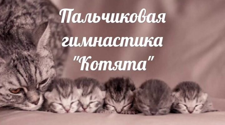 Пальчиковая игра «Котята»